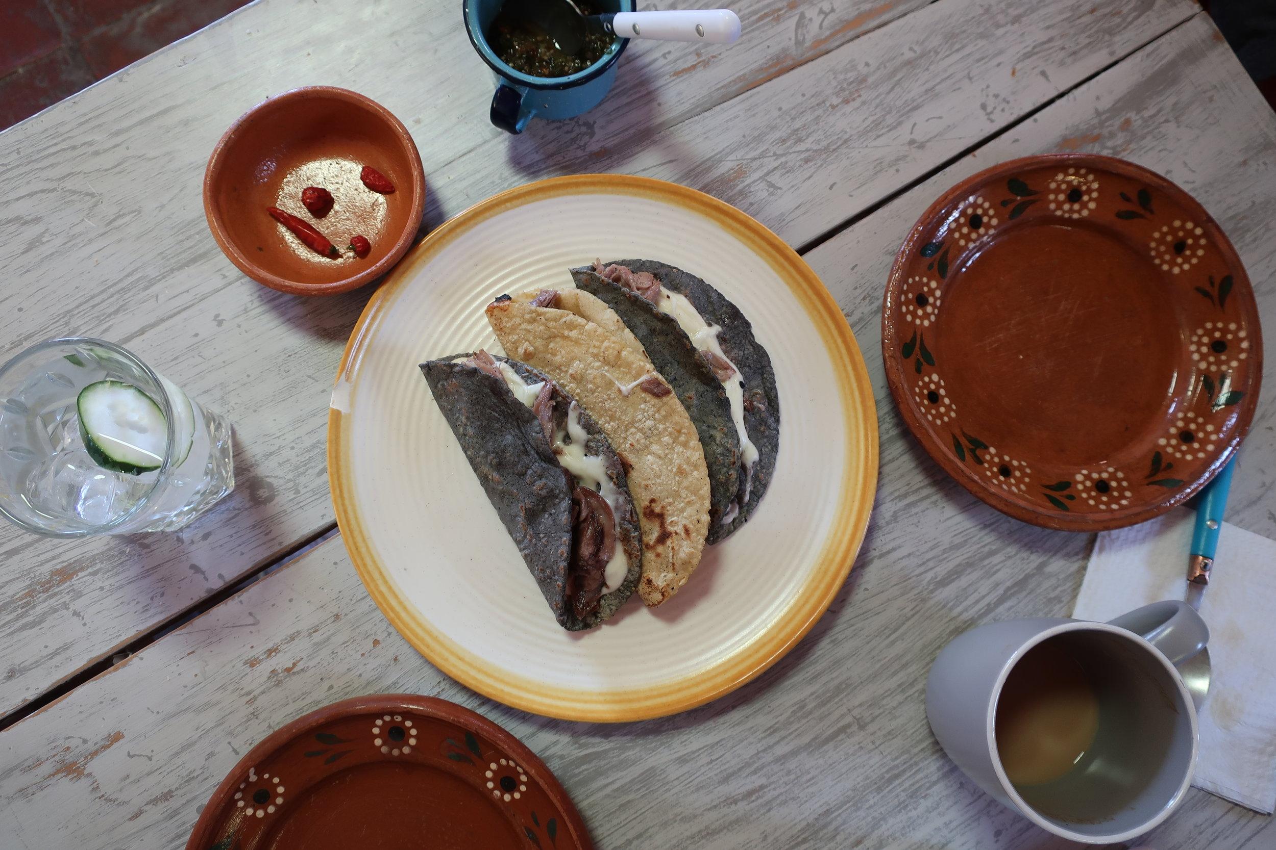chamorro quesadillas at nicasio comedor mexicano in san miguel de allende, mexico