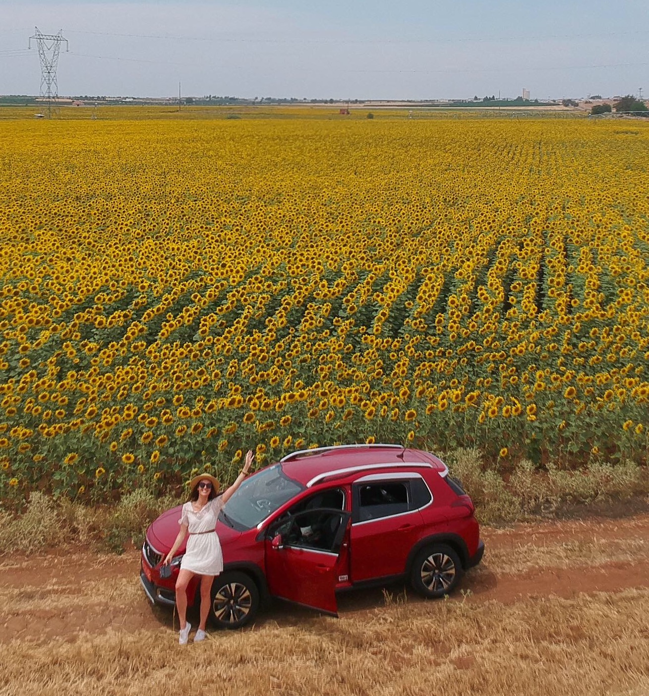Finding fields of sunflowers near Beja, Portugal while on a roadtrip in my Peugeot from  AutoFrance