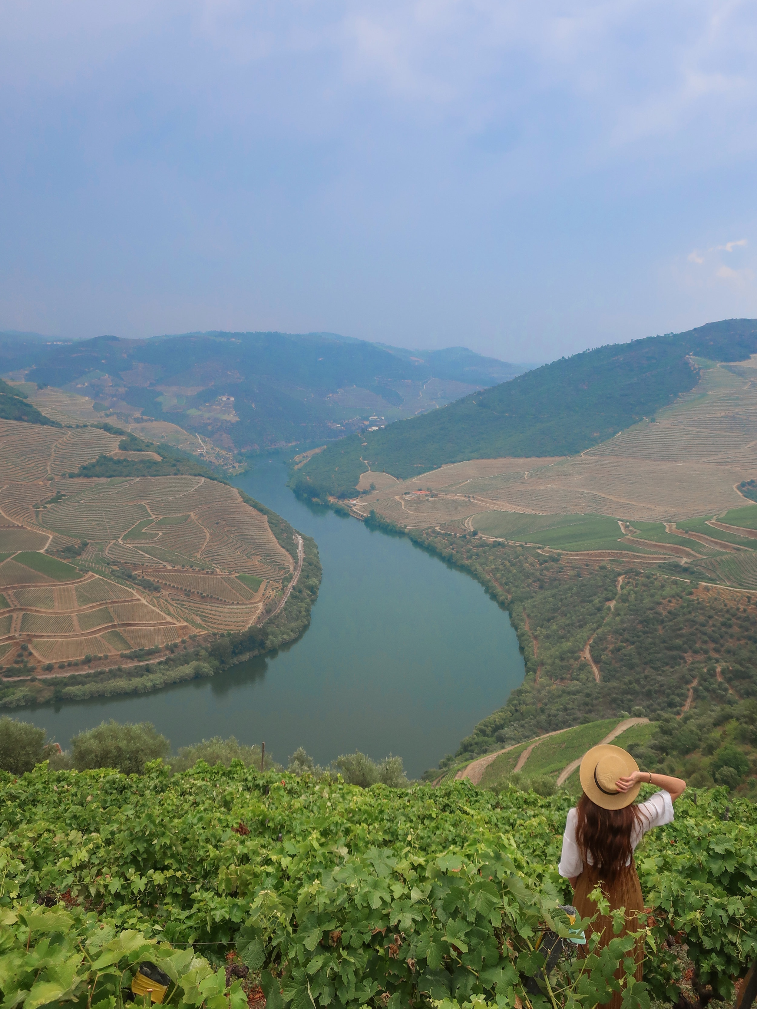 wine tasting and tour at quinta das carvalhas in Portugal's douro Valley