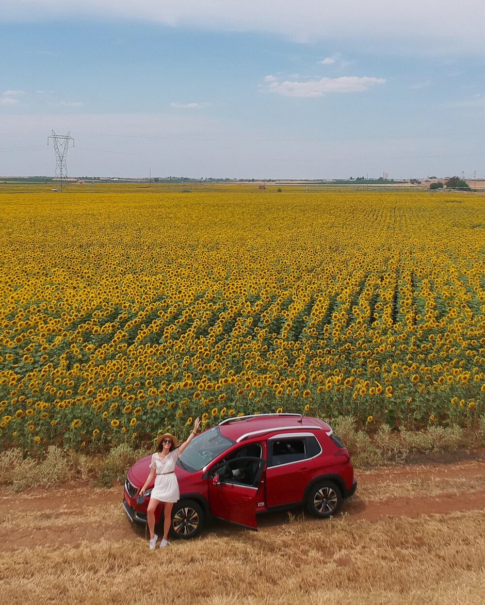 We Drove Past Fields of Sunflowers on our Summer Road Trip Through Portugal.  Click here to read the full itinerary.