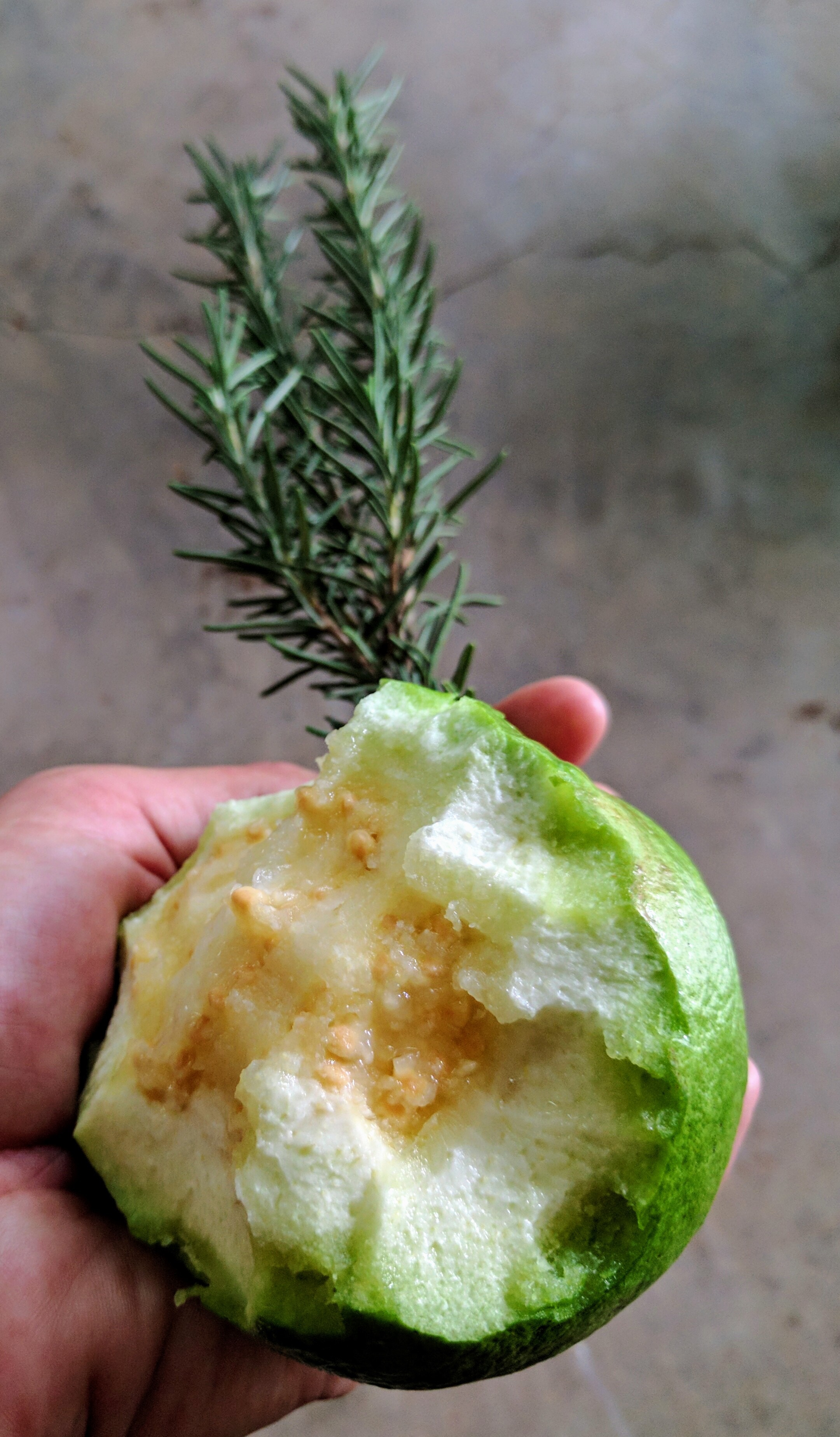 Farm_Apple Guava Fruit.jpg