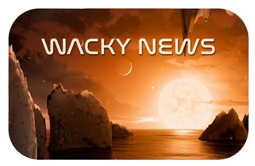 WackyNews.jpg