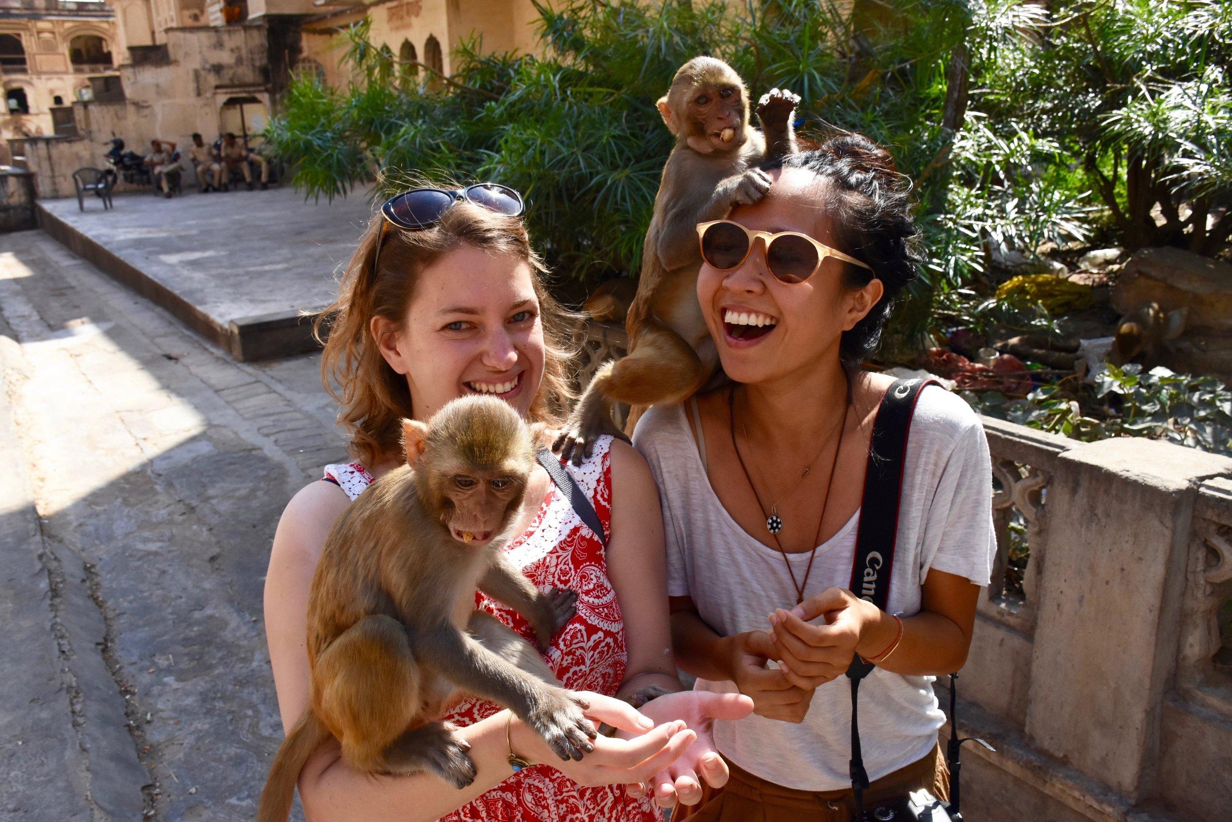 Monkey lovefest with Gallia // Photo credit: Wylie