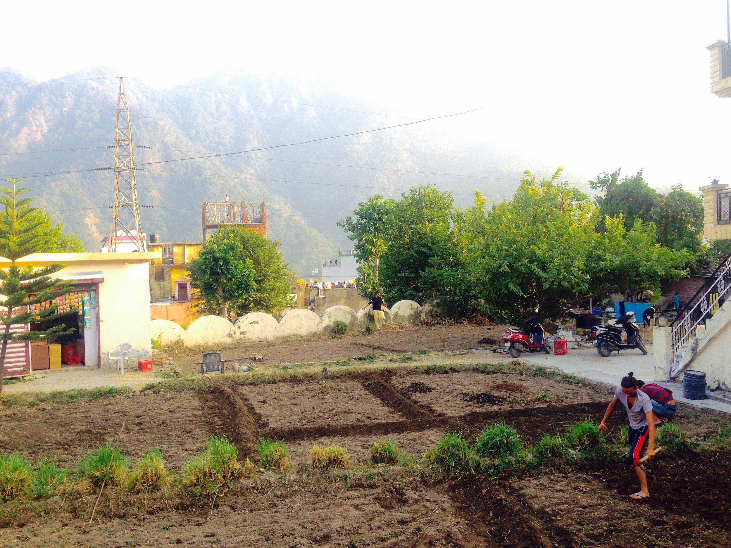 The ashram boasts a beautiful garden