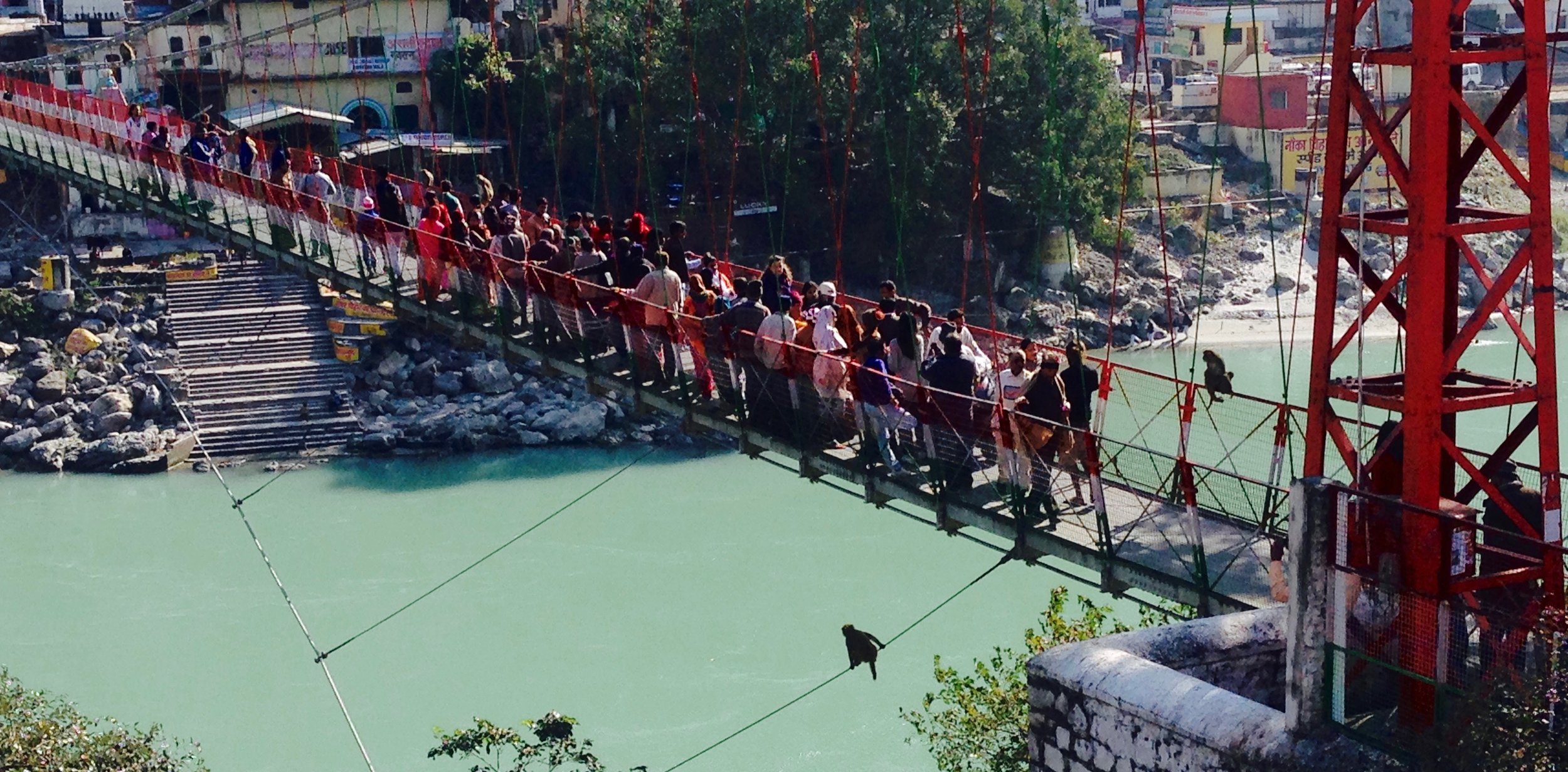 Typical Rishikesh traffic jam, monkeys included