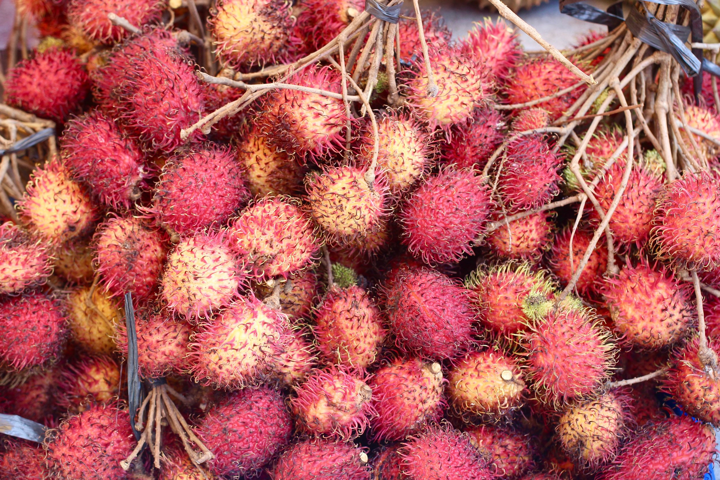 Rambutan break....these cost so much at Whole Foods back at home, but here on the streets, they're just a few cents. Tastes kinda like a lychee.