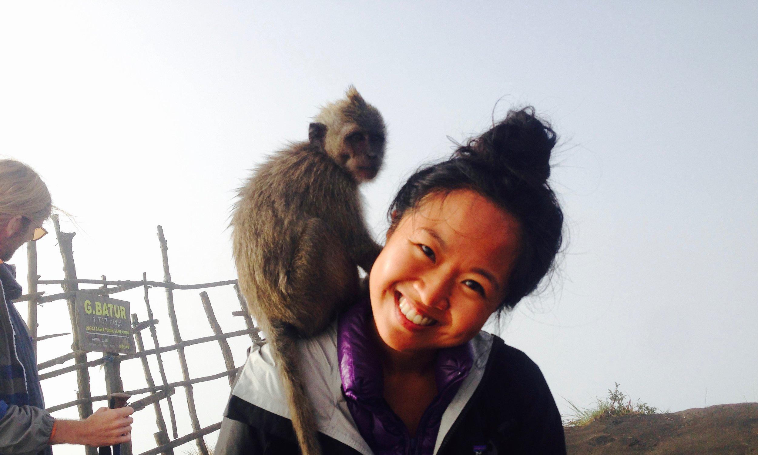 Monkey 1, Monkey 2