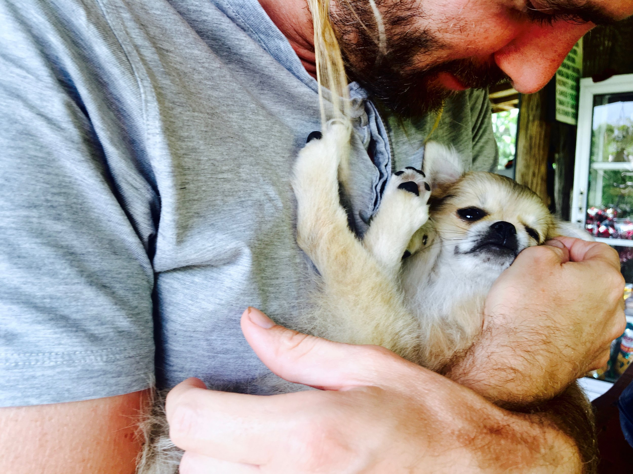 Cuddling a puppy before making a long motorbike trek = therapy