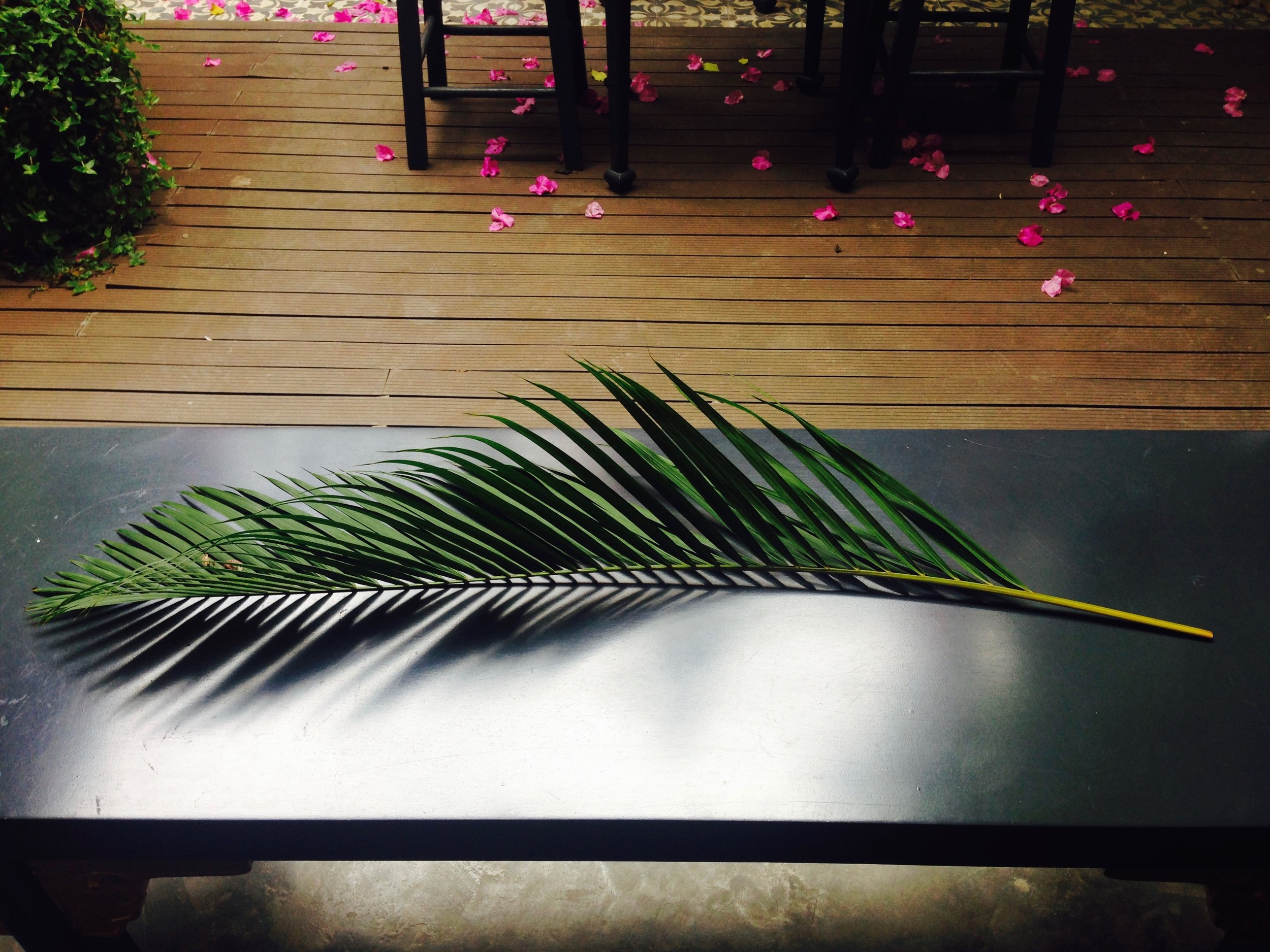 What's a cute boutique shop without a free-standing palm frond for you to cool off with?