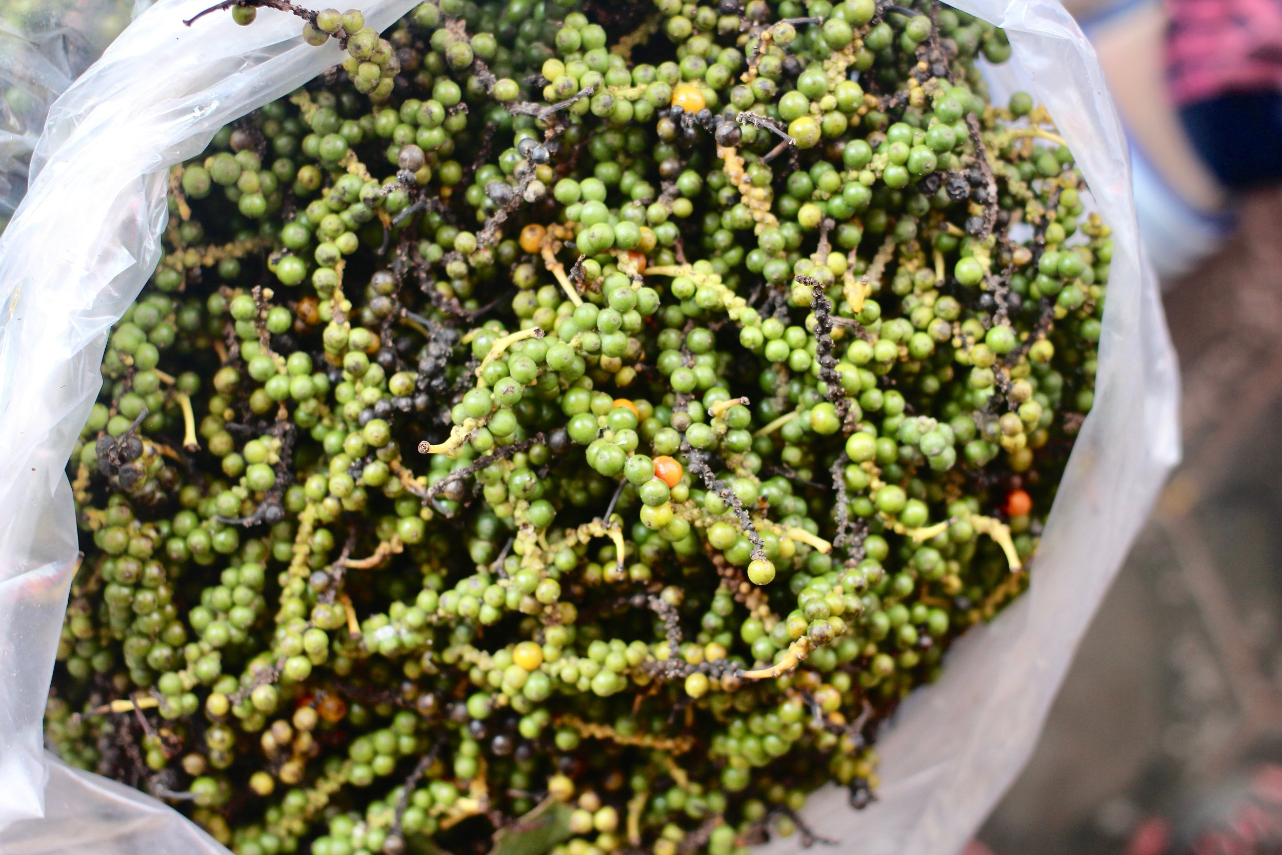 Fresh Kampot pepper to add some mouth-watering Anthony Bourdain-approved flavor to the crab mix