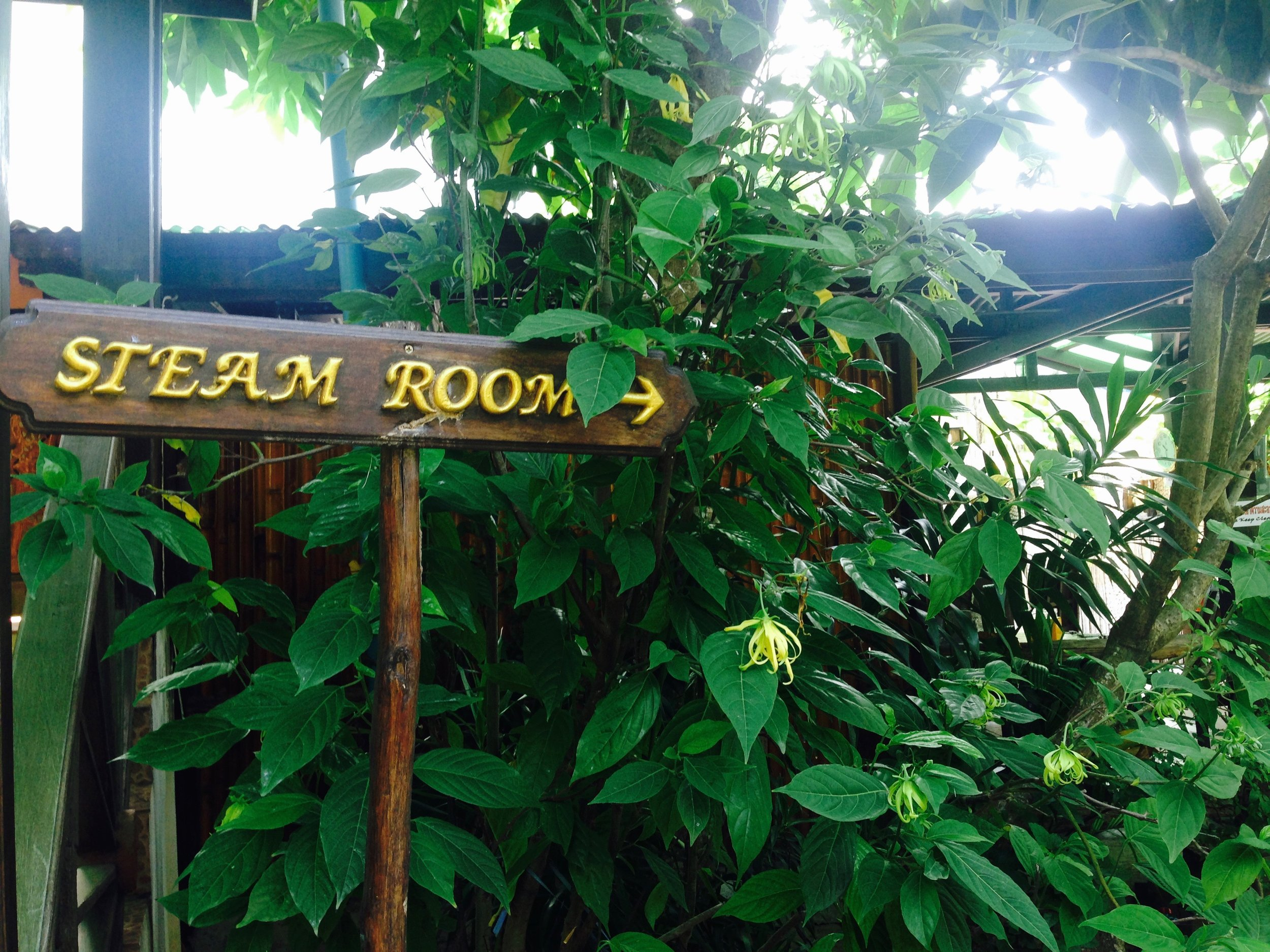 Complimentary steam bath pass, good to take post-colema to sweat all the remaining toxins out