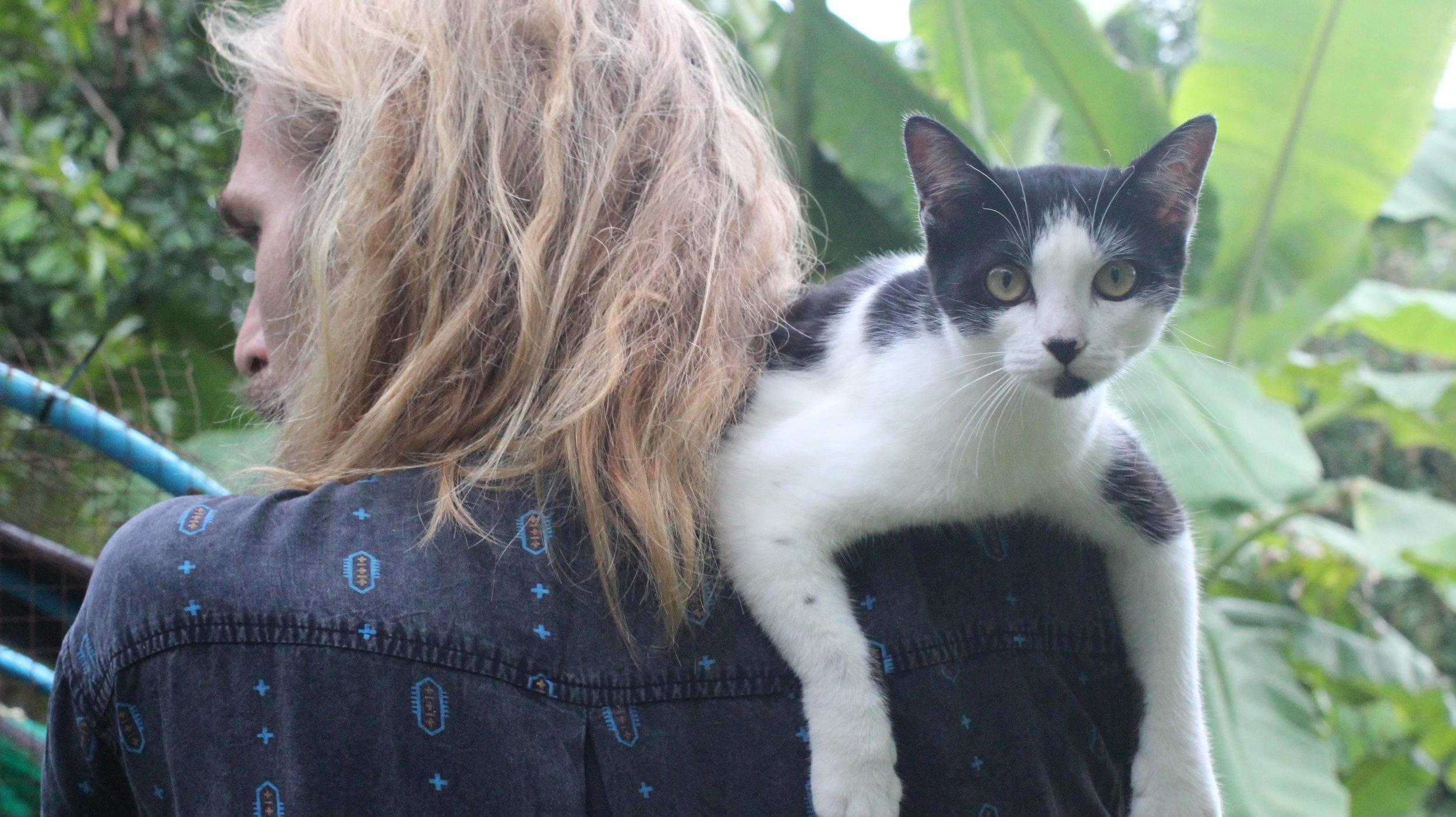 SPIRIT CAT, LING <3