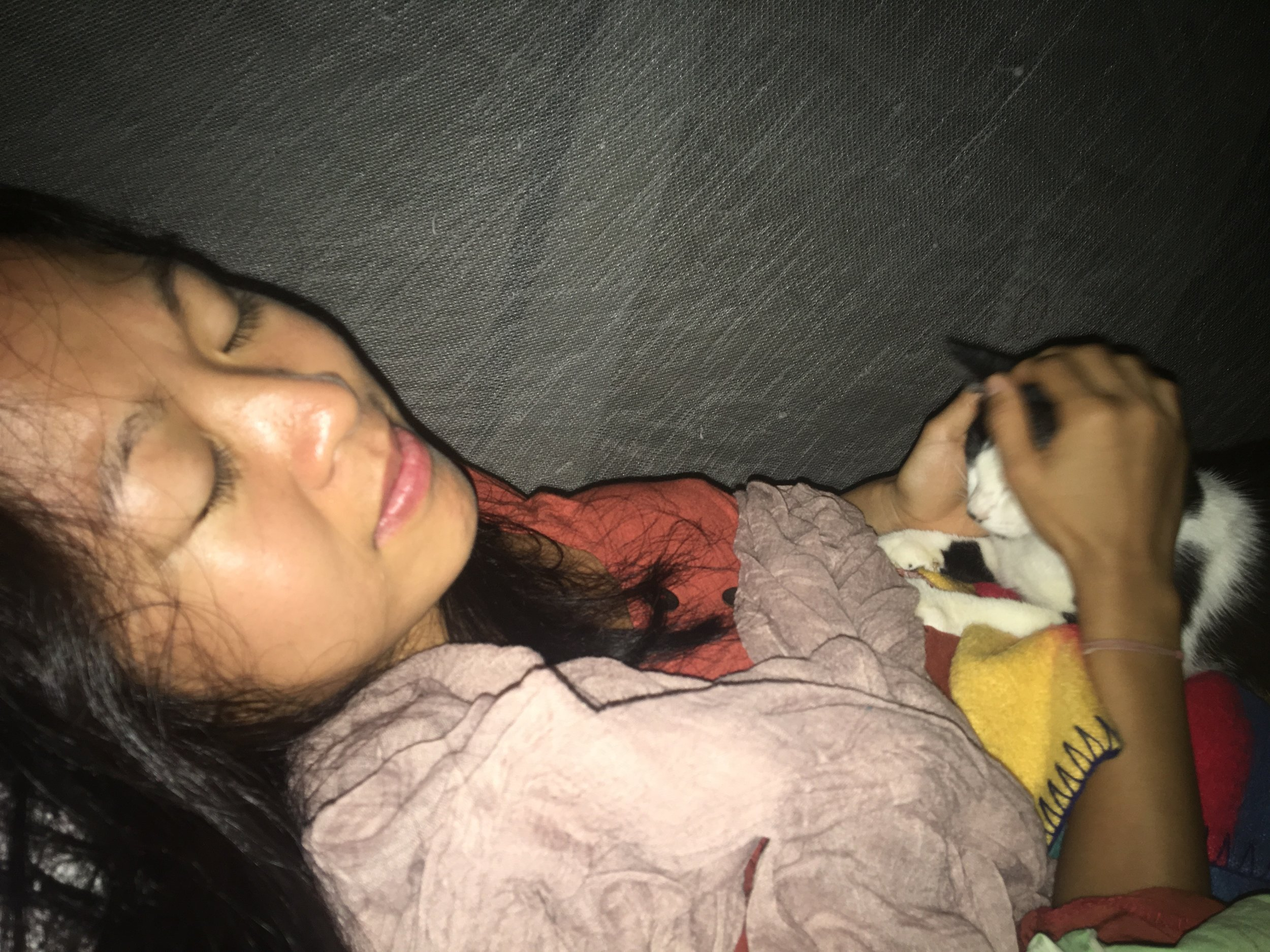 Last night at Panya. Little Ling Ling wanted ALL the cuddles #nosleeptilpanya #wylieoncameraalways