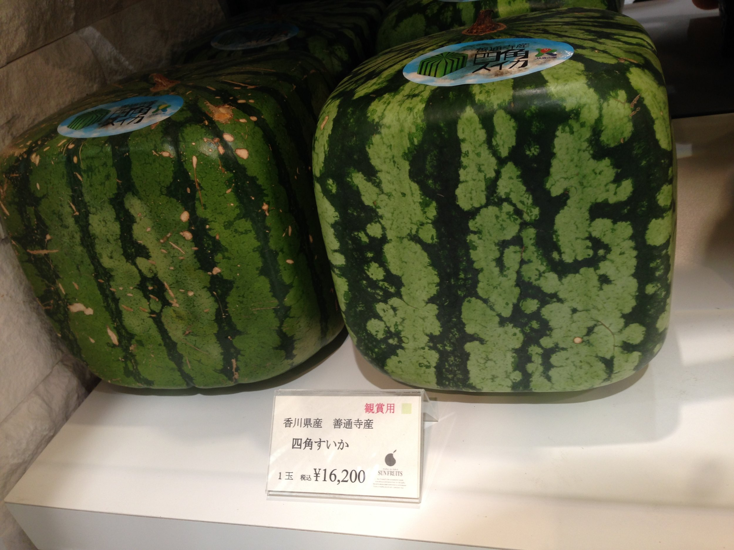 $100 for ONE watermelon! Good for gifting your fancy colleagues