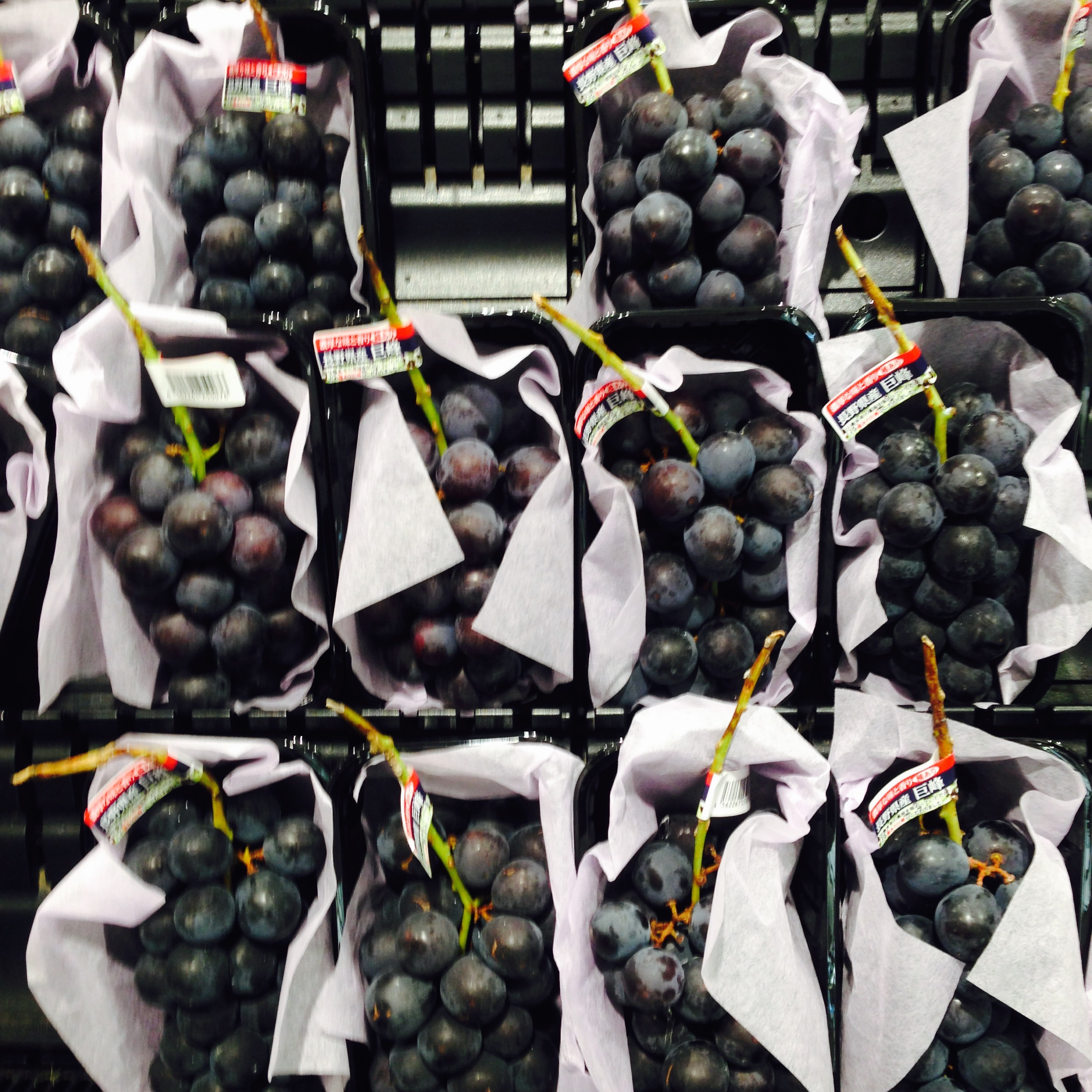 Have you ever seen such perfect grapes?