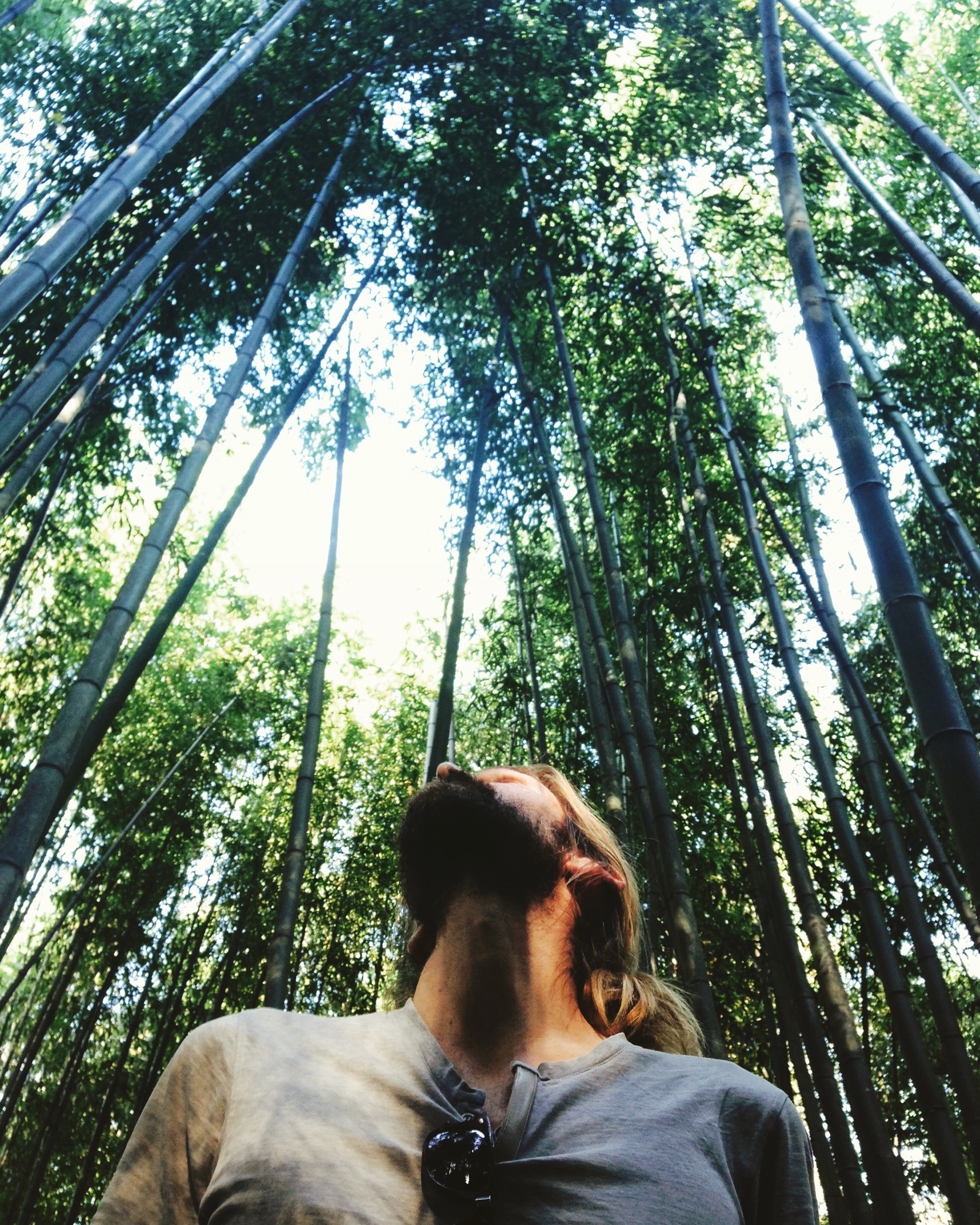 Arashiyama Bamboo Grove in Kyoto - today a year ago, Wylie left his corporate cubicle to join me on this crazy adventure <3