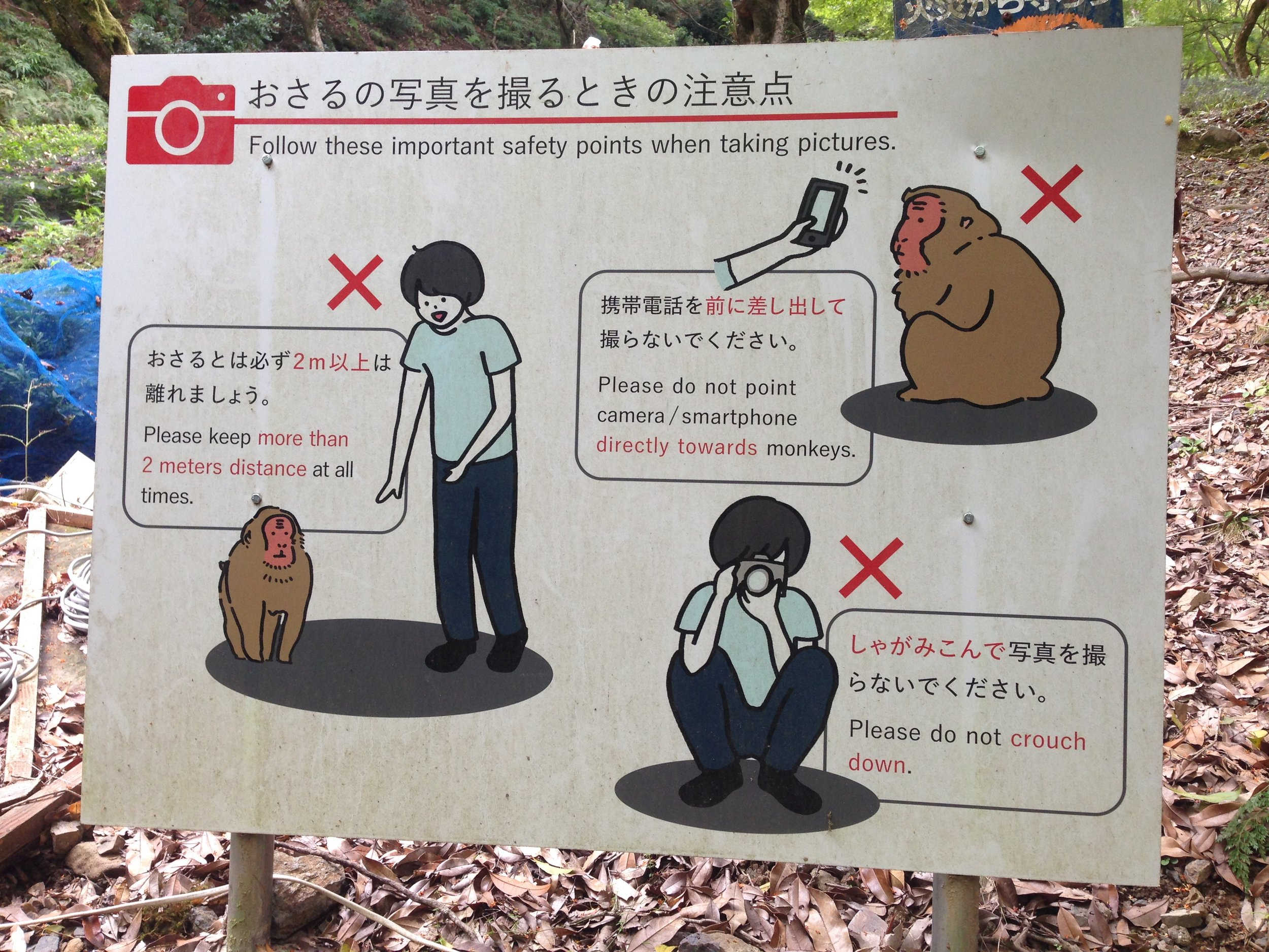 Can someone explain why we need reminding of these safety points? Replace these monkeys with humans, and wouldn't the same rules apply? Hm...