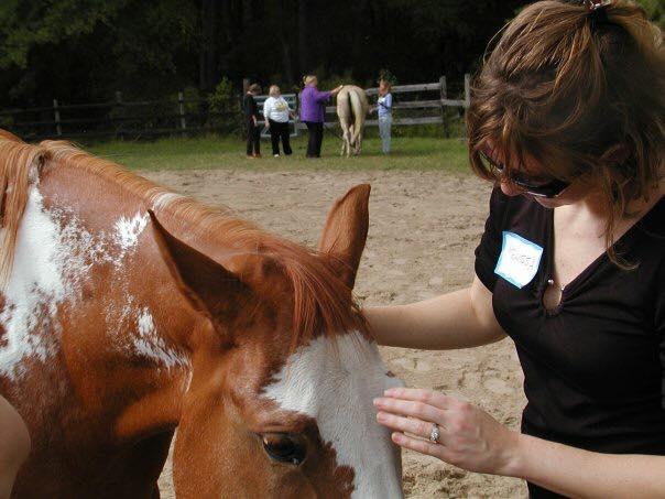 horse work.jpg