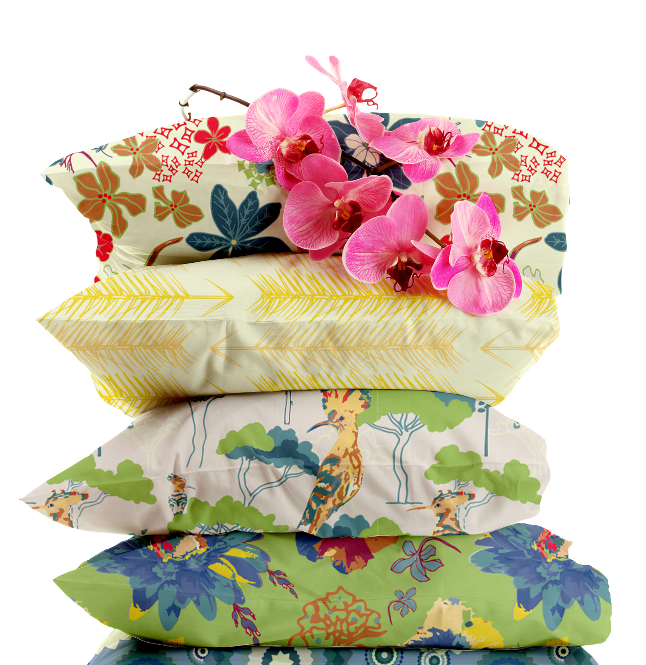 Clifftop-Garden-Cushions-Mockup copy.jpg