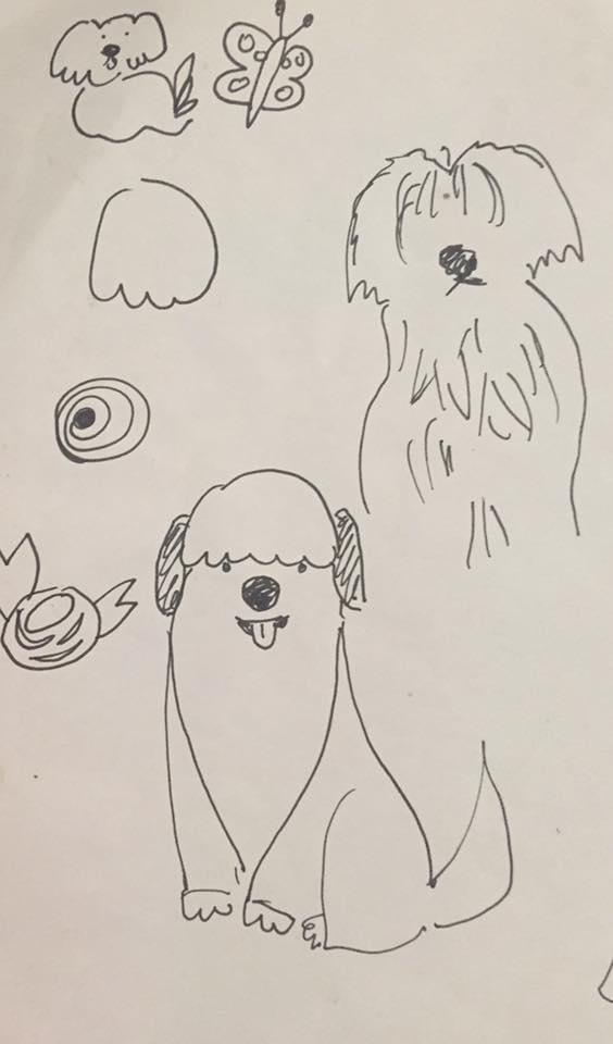 Rita dog sketches.jpg