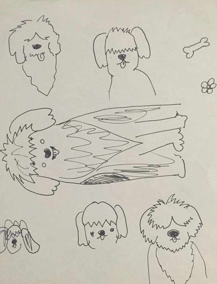 Rita dog sketches 2.jpg