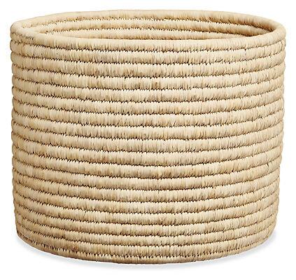 basket plant.jpg