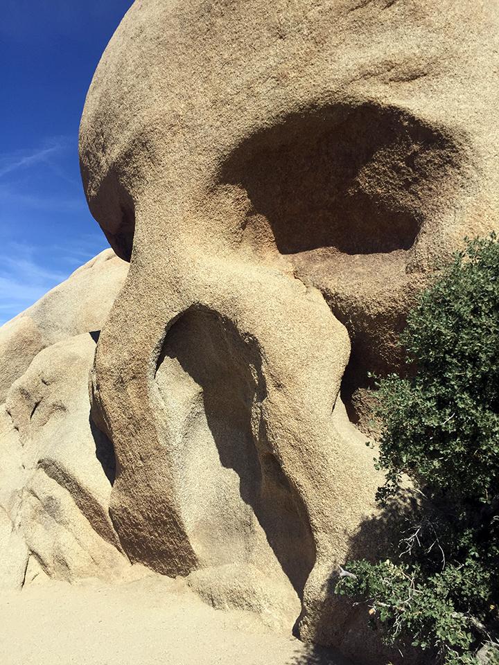 Skull Rock, Joshua Tree National Park.