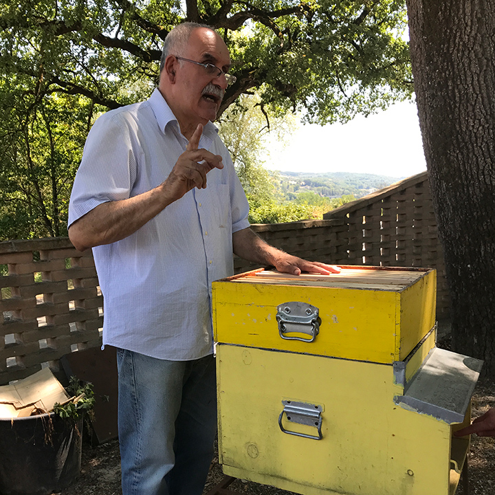 Señor Palombi showing us a demonstration hive.
