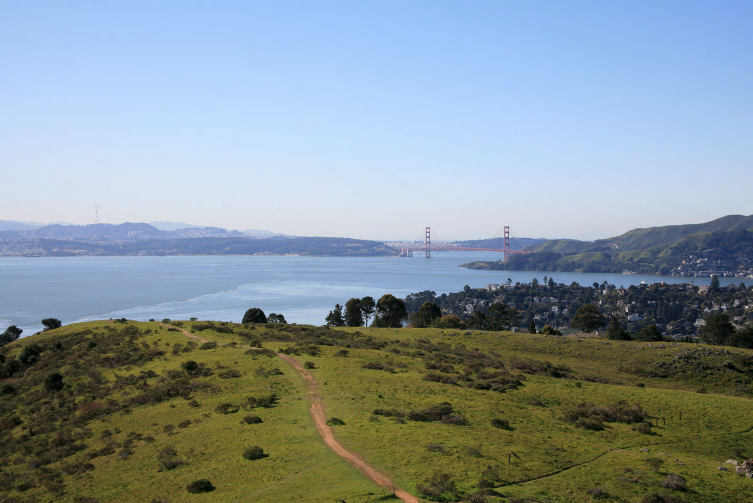 Tiburon Open Space
