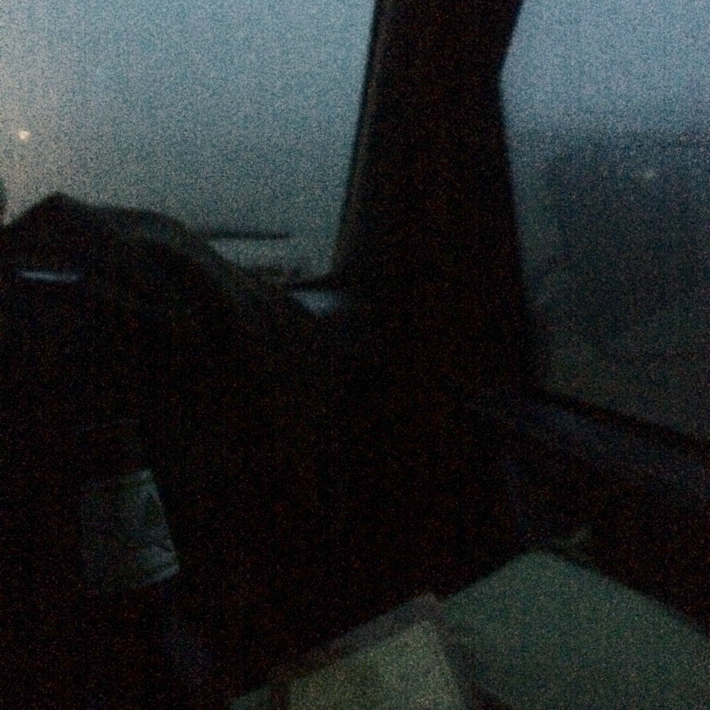 A view from the van.