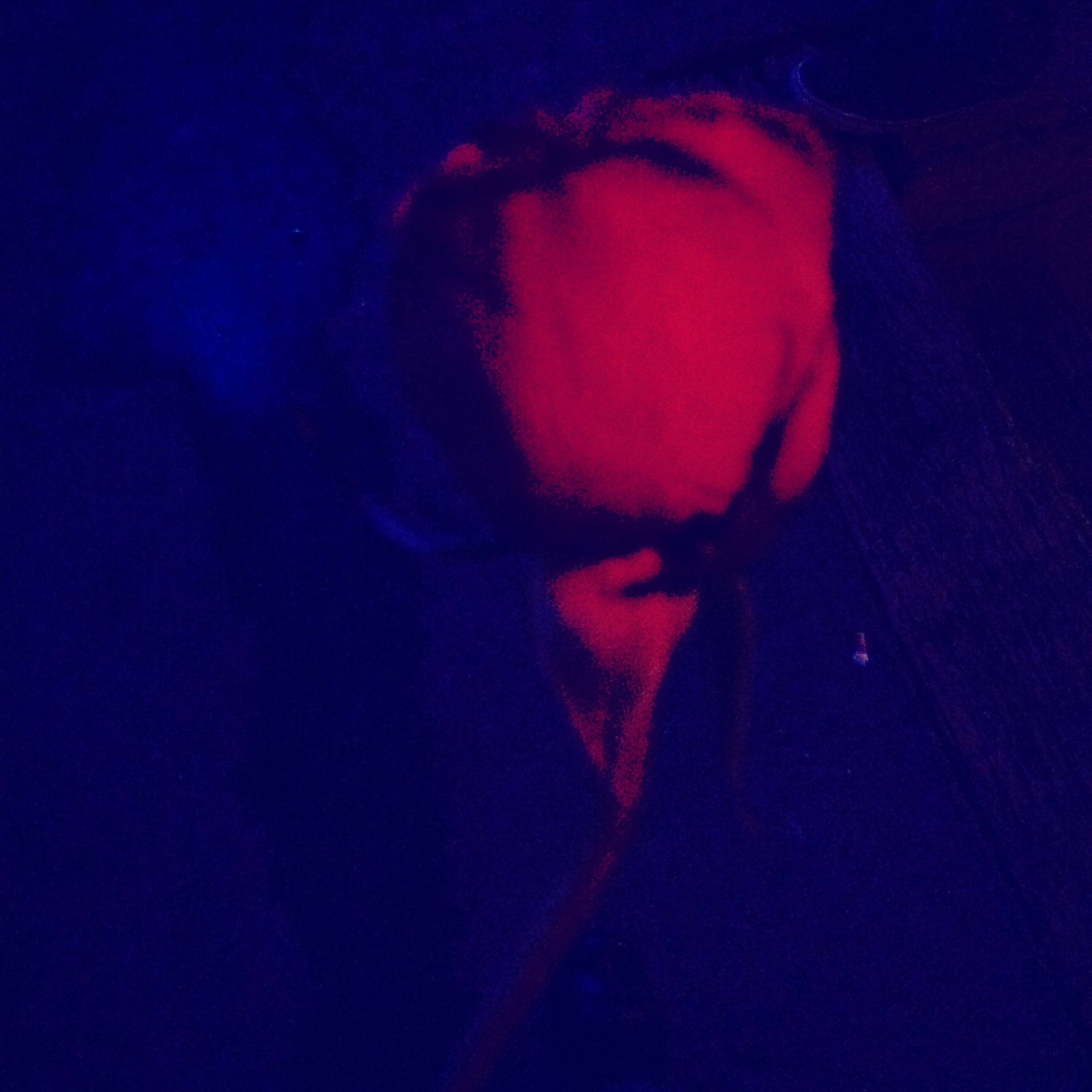 Someone named Peyton gave me a rose after I played. I love roses! Hopefully that becomes a regular thing because I could get used to free flowers.