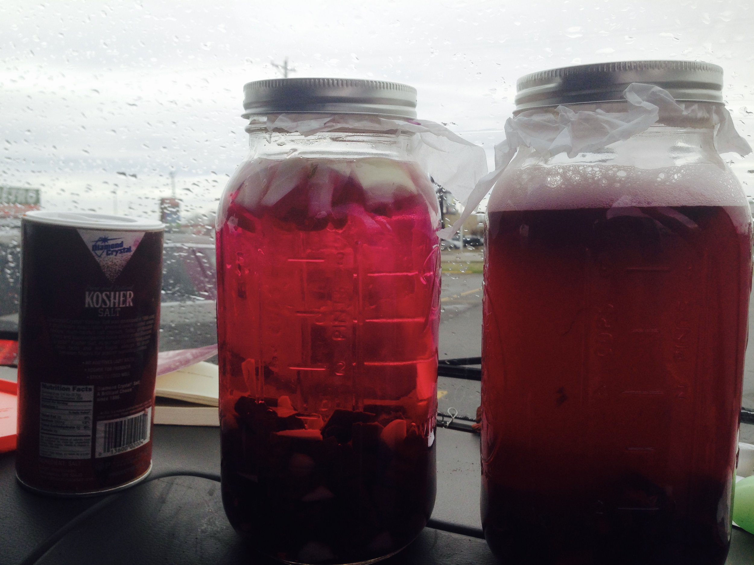 The ferment on the left is the one that was JUST made at the truck stop, the one on the right is a few days in. After a day or so more the one on the right is going to be crazy deep magenta purple red.