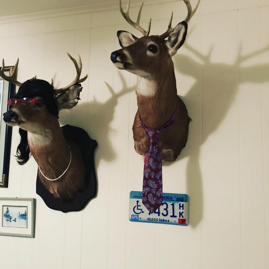 Our friend Carrie from Harrisonburg is a taxidermist. She let us crash at her house and meet her deer.