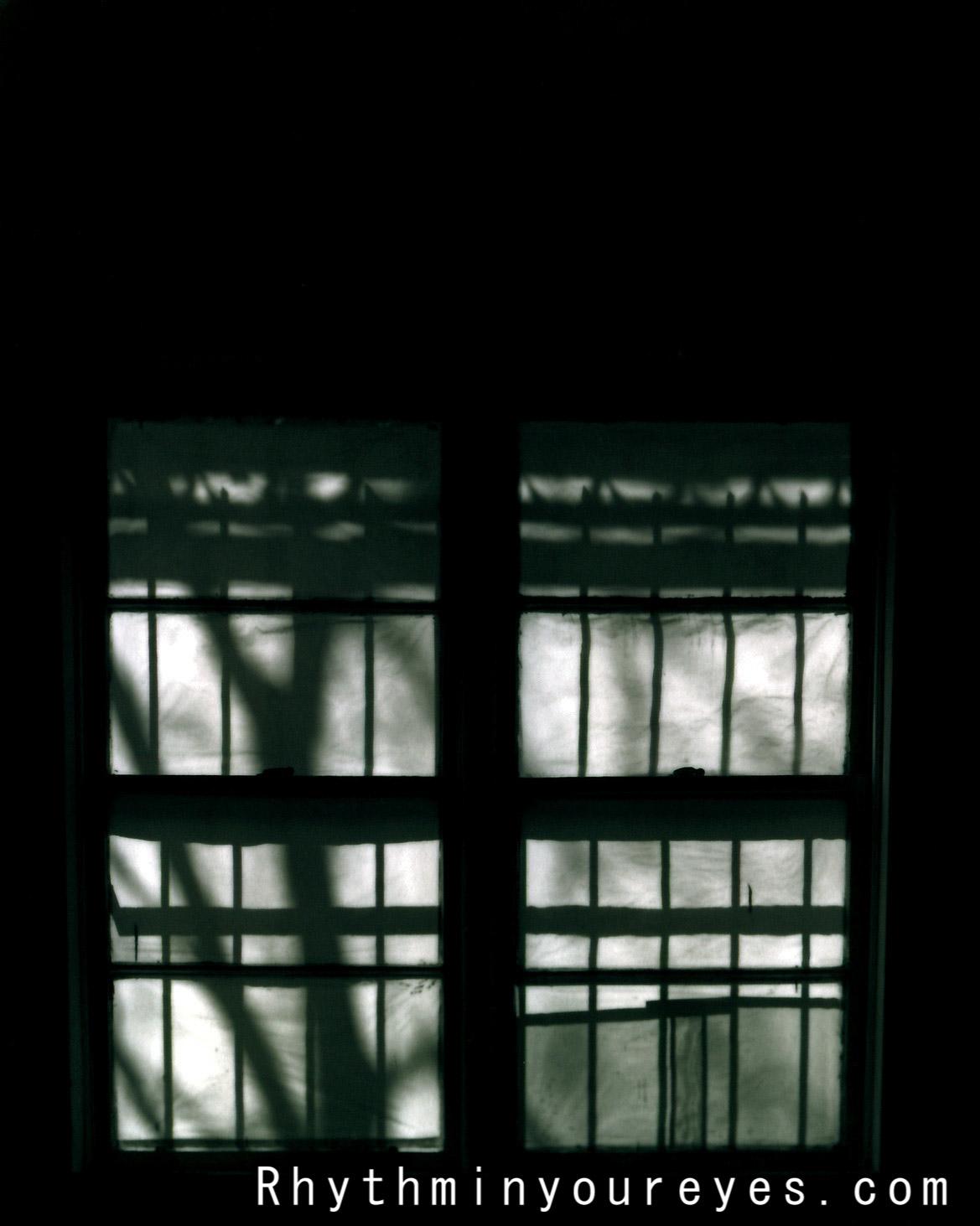 film-055.jpg
