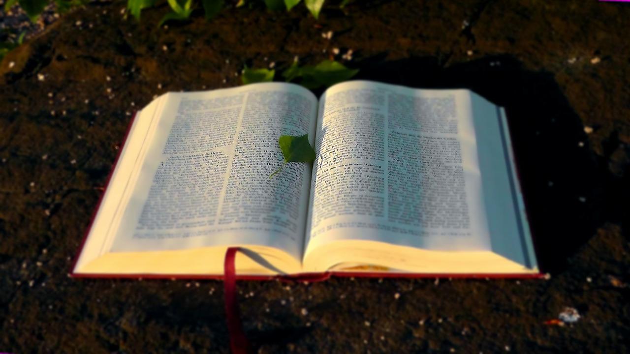 Bible and leaf.jpg
