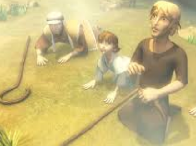Shepherds.png