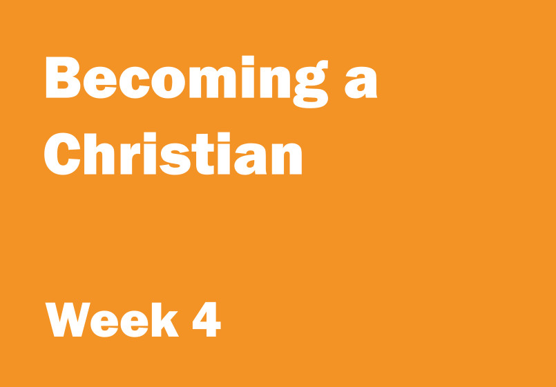 Week 4.jpg