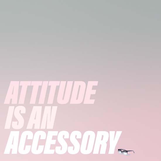 attitude accessory .jpg