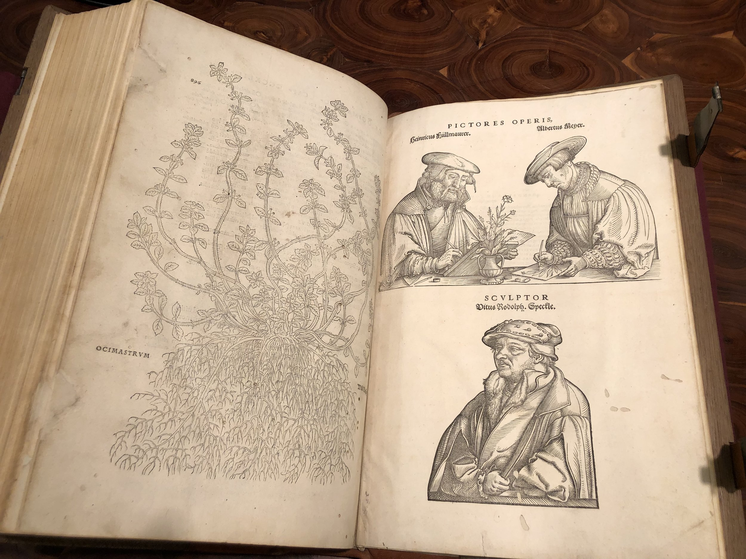 A book about Botany