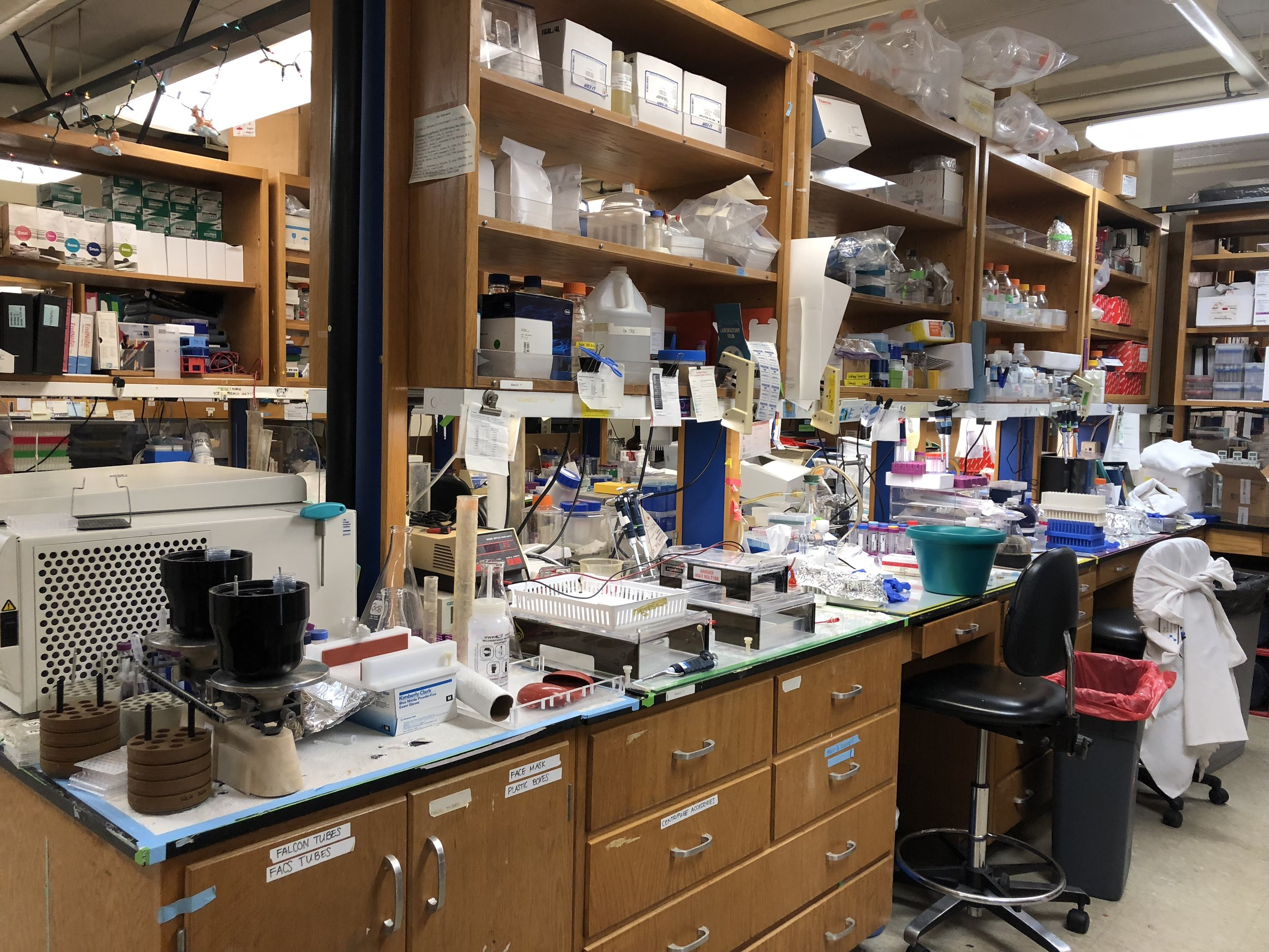 Copy of Scripps Lab