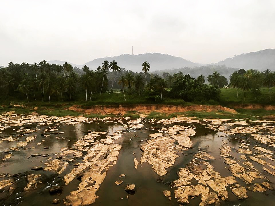 Pinnawalla, view from Elephant Park Hotel