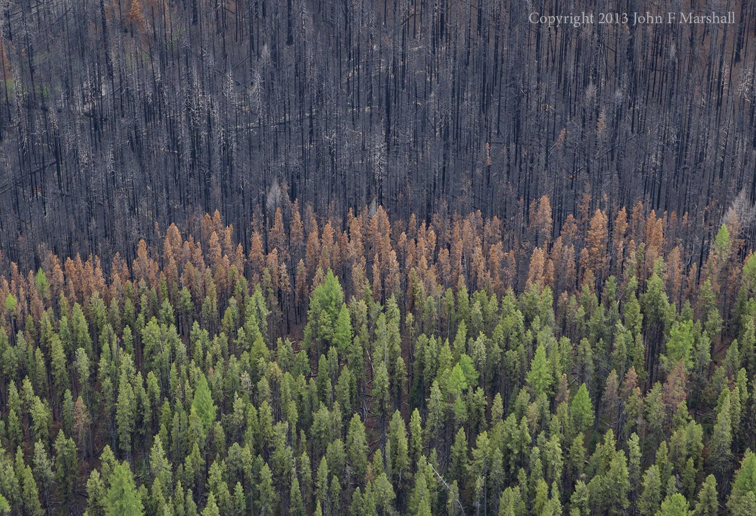 Aerial photo over Table Mountain Fire area.  Cle Elum R.D. Okanogan Wenatchee National Forest, WA