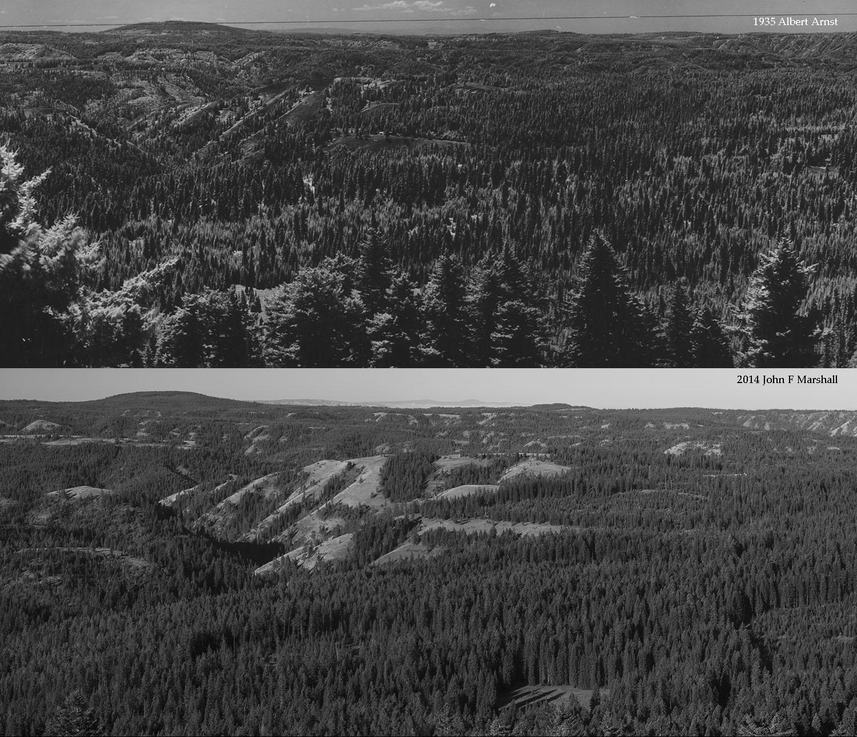 High Ridge-3.jpg