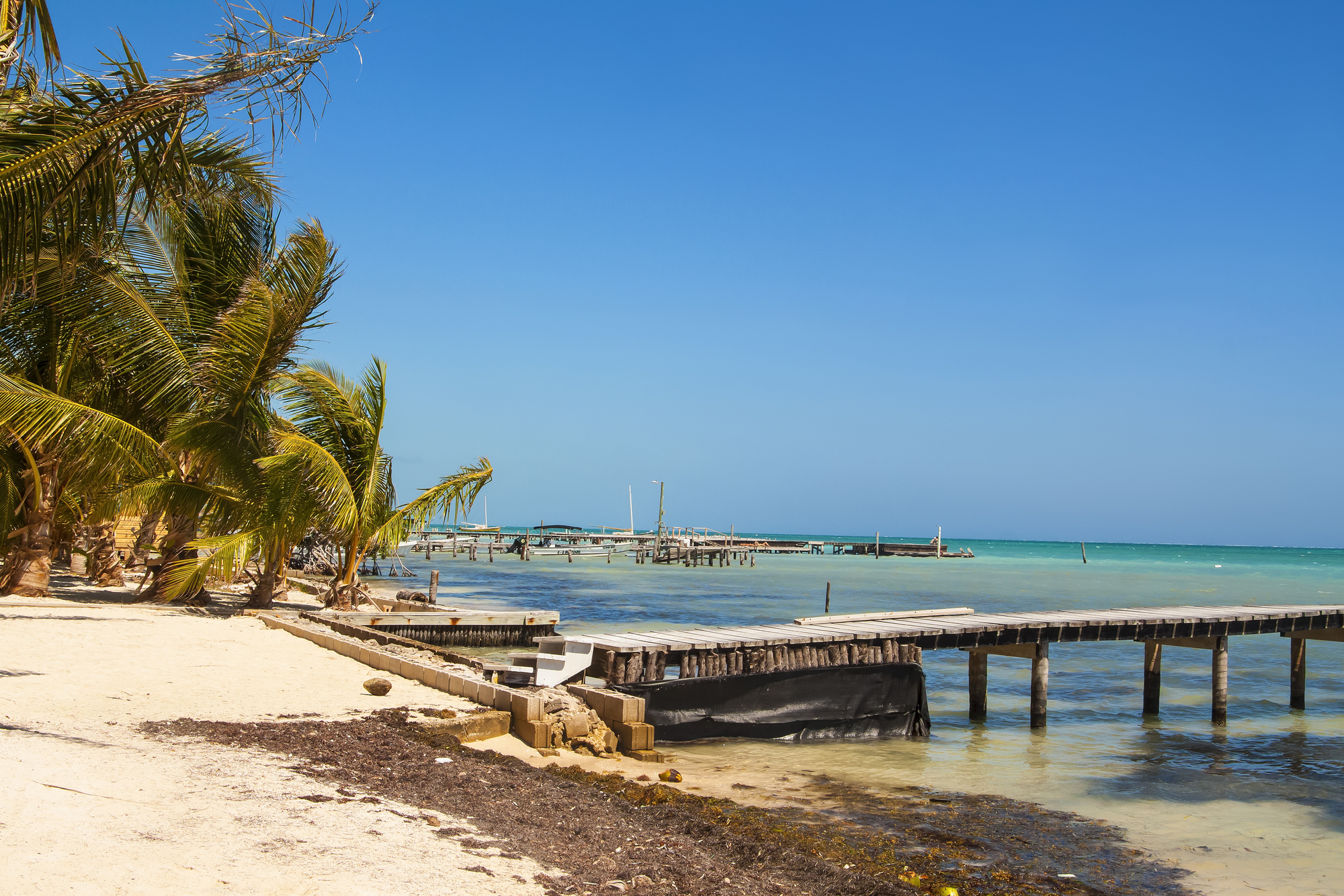 alepietrocola belize?format=2500w - The Bootstrapper's Guide to Forex Brokerage Licence in Belize