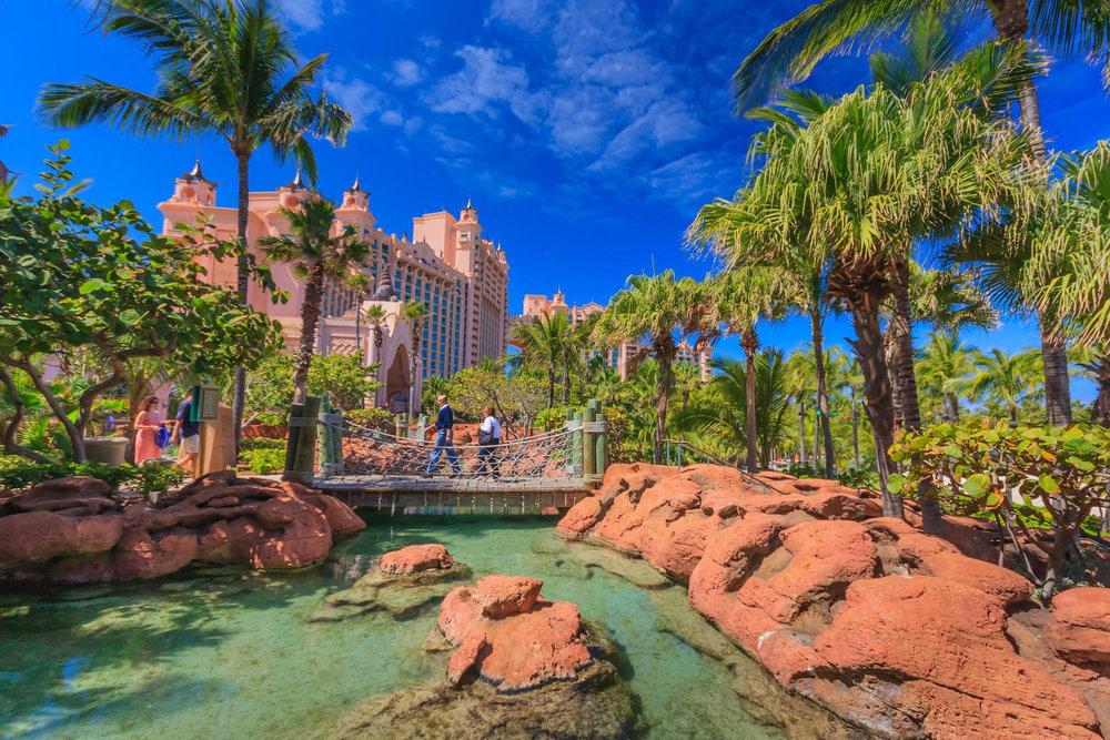 Astorts Bahamas.jpg
