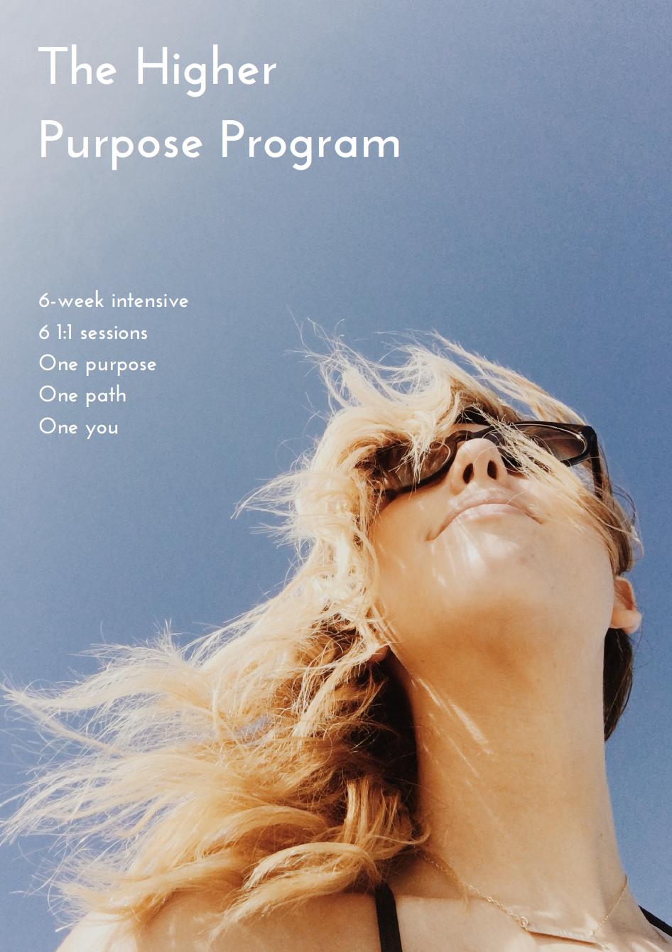 higher-purpose-program