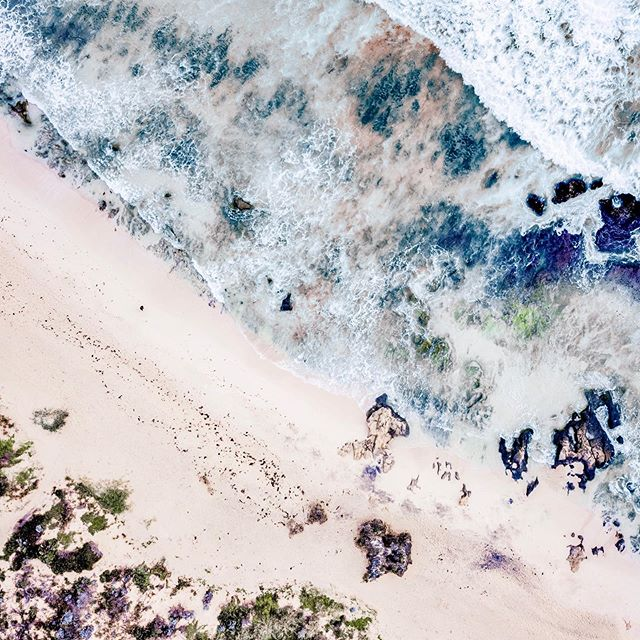 Whatever you are going through this week. Know that there are angels and energy behind you every step of the way. An intention you set last week.. a prayer your mom offered up last night.. the nutrients entering your body from your last meal.⠀ ⠀ There are so many subtle contributors to every moment of our lives. Some in our control (what we eat, how we plan, the ppl we choose to have in our lives), and some we have no control over, and may never come to be aware of consciously.⠀ ⠀ What does all that mean? Take care of what you can, and don't judge yourself too harshly with however it is you're showing up today. You can do nothing but your best, and trust that you're operating in a web of good intent. All of nature is designed to grow and heal (& we are nature). 🙌🏼⠀