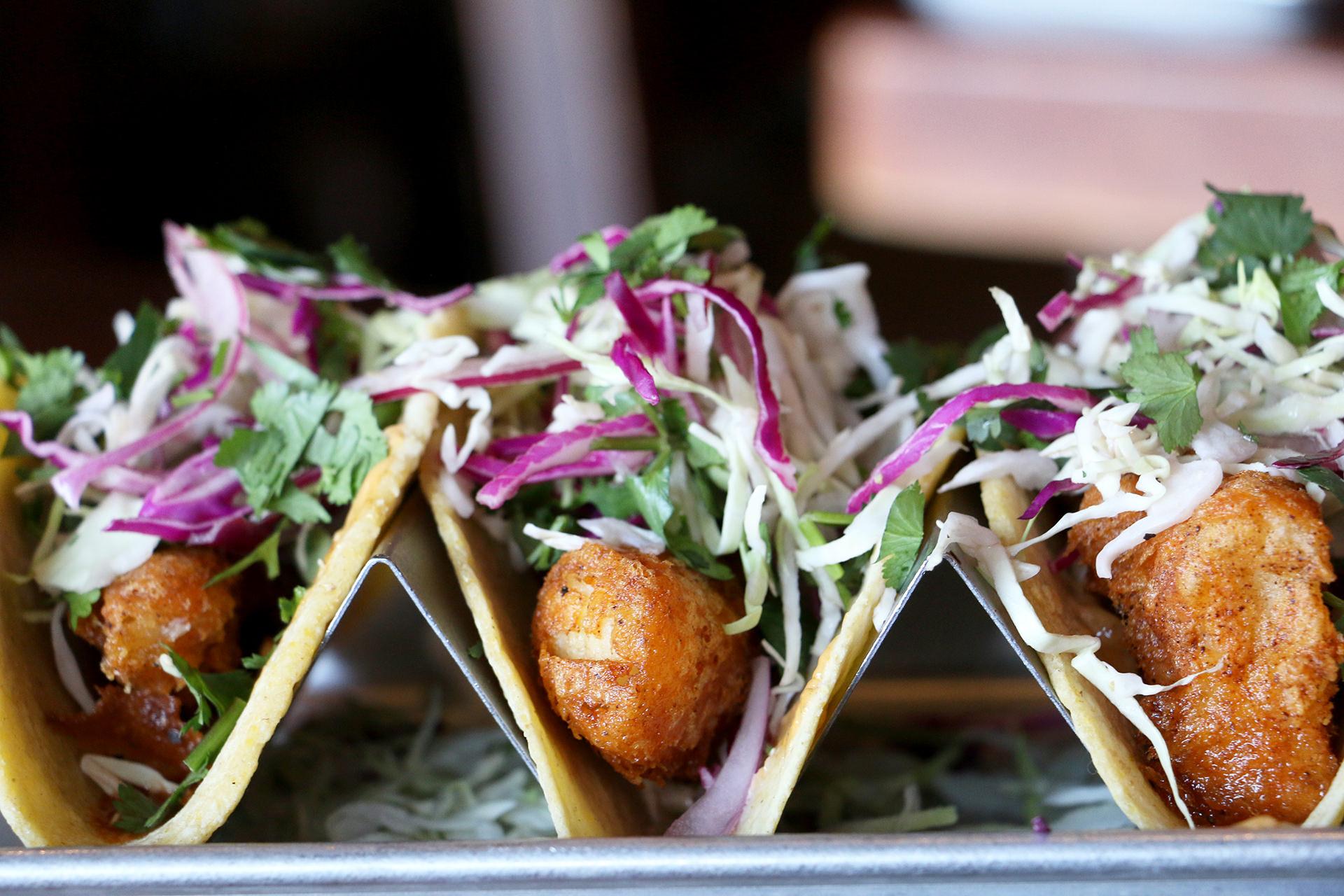 Fish Tacos AYT IMG_9795 18.JPG