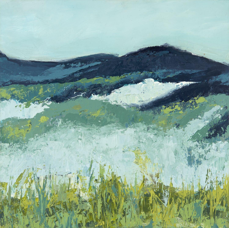 Spring Meadows 2