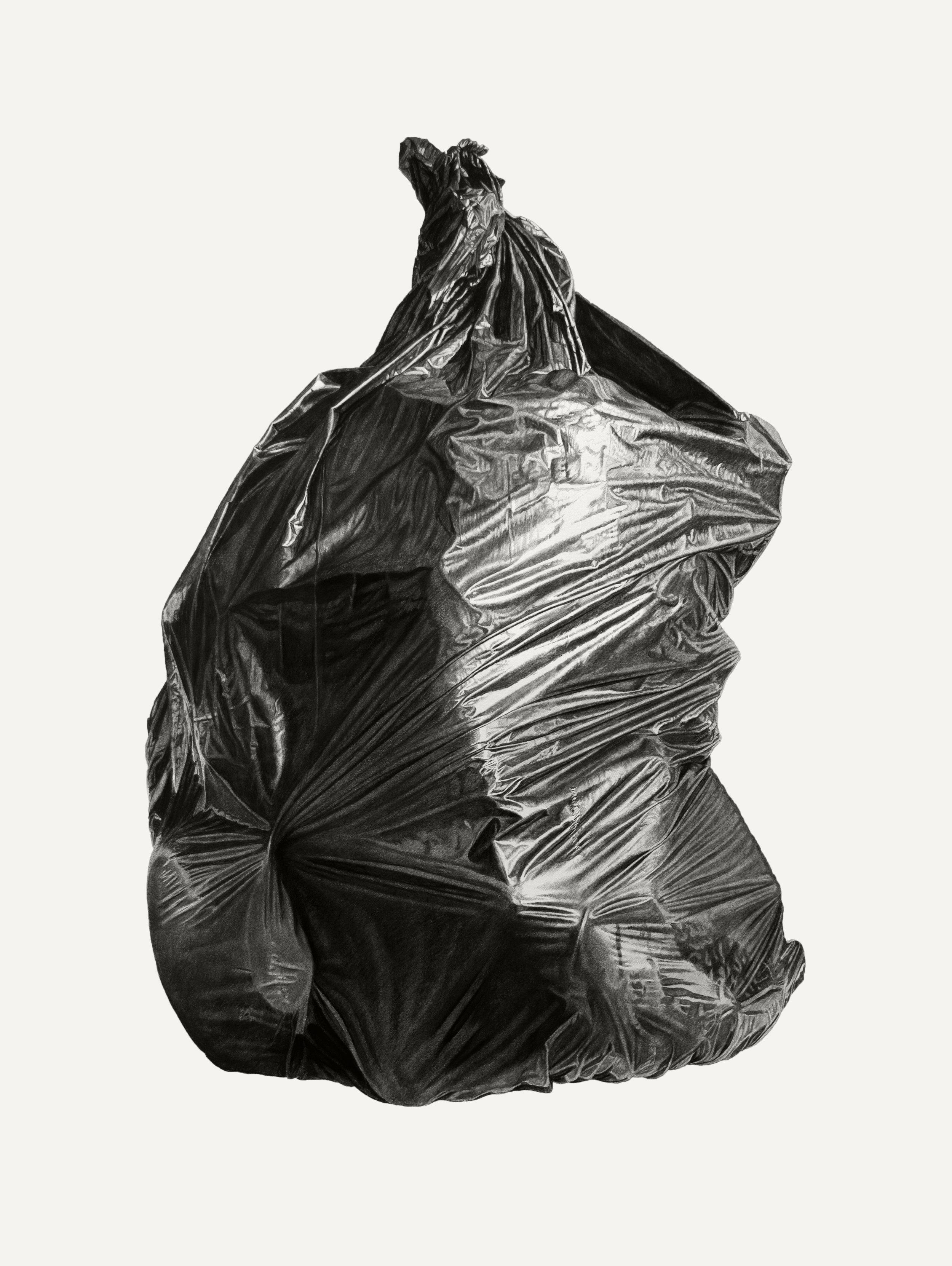 Neighborhood Still Life #9 (Black Bag)